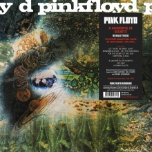 A Saucerful Of Secrets (2011 Remastered) (Vinyl)