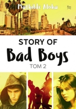 Story of Bad Boys. Tom 2