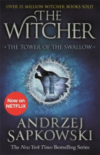 The Witcher 4: The Tower of the Swallow