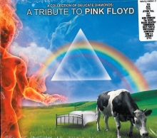 A Collection Of Delicate - Tribute To Pink Floyd (Digipack) (nw)
