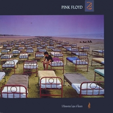 A Momentary Lapse Of Reason (2011 Remastered) (Vinyl)