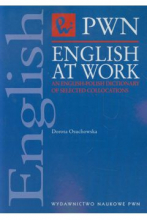 English at Work an English Polish Dictionary